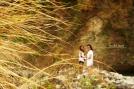 Golden Streak. Batangas